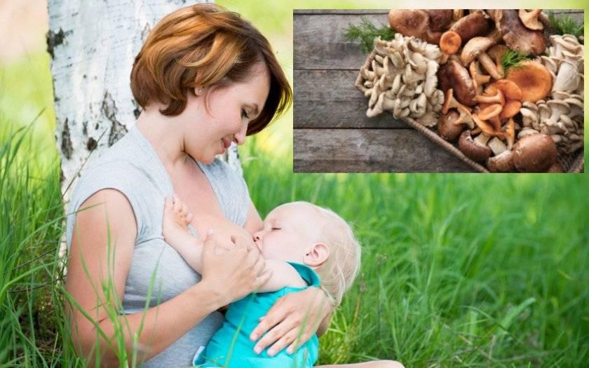 Можно ли есть грибы при грудном вскармливании: влияние на маму и ребенка