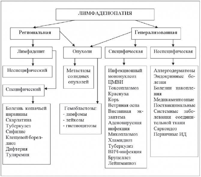 Лимфаденит у детей: причины заболевания, основные симптомы, лечение и профилактика