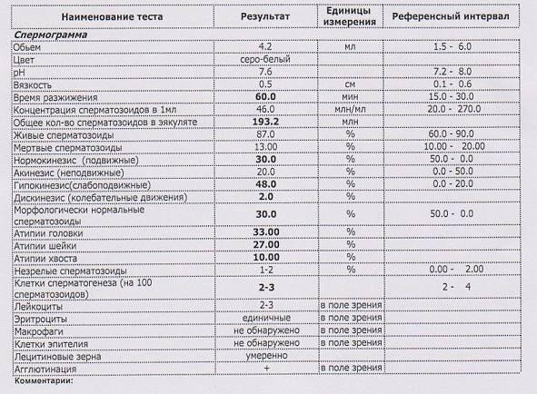 Эритроциты, лецитиновые зерна и клетки эпителия в спермограмме: что это означает? - мытищинская городская детская поликлиника №4