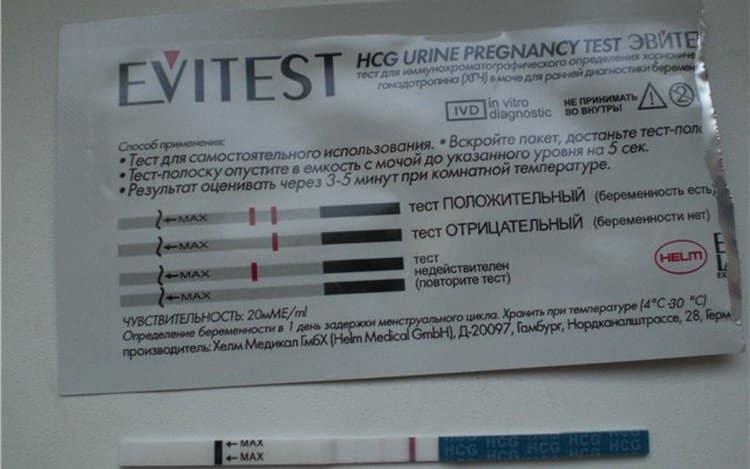 Все о тестах на беременность и их правильном использовании - полисмед