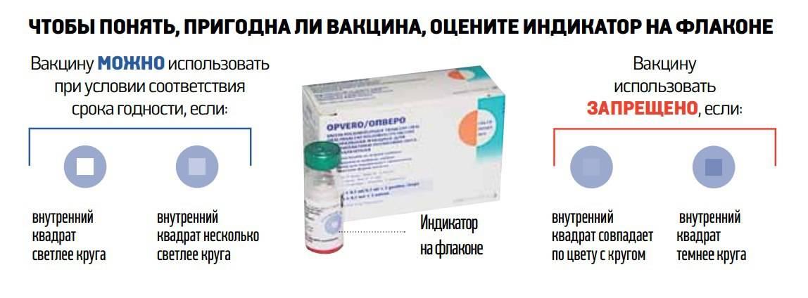 Коронавирус после прививки: как сильно люди болеют ипочему это происходит