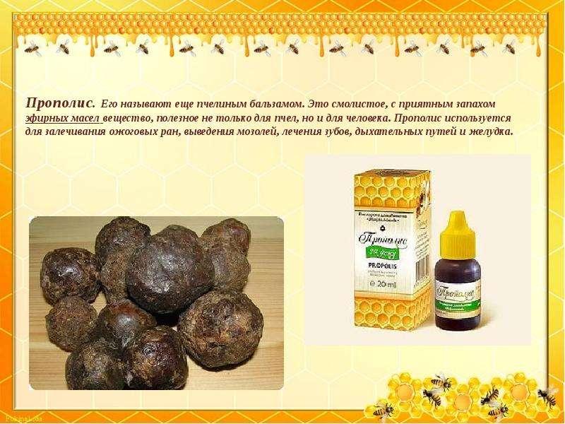 Мумие: лечебные свойства, способ применения внутрь, для волос, кожи и от растяжек