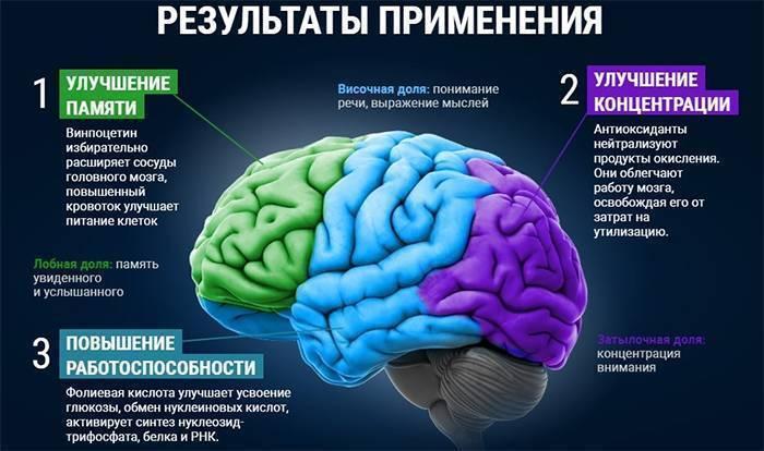 Какие витамины нужны ребенку для памяти и внимания