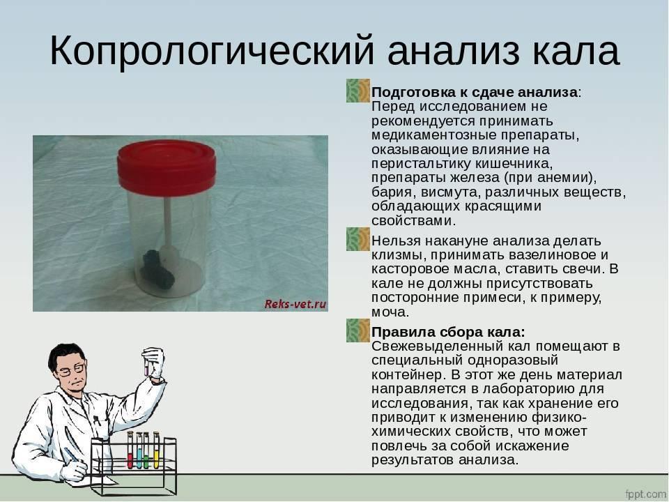 """Подготовка к диагностическим исследованиям - государственное учреждение здравоохранения """"детская областная больница"""""""