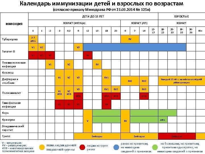 Календарь прививок 2020: какие прививки ставят детям и когда? | «гцмп»