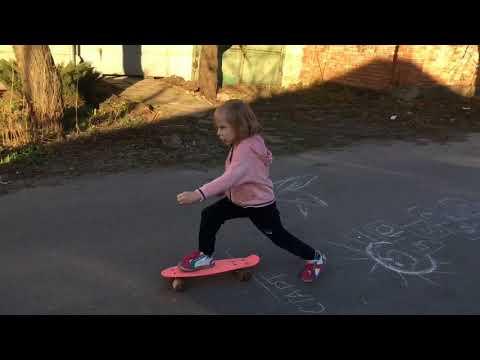 Чем отличается пенни борд от скейтборда их виды, как научится кататься, скейтборд на двух колесах