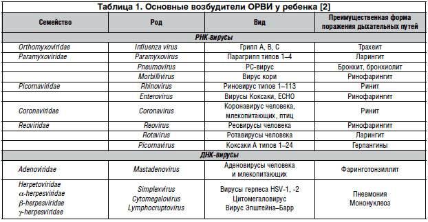 Вирусные респираторные заболевания: грипп, коронавирус, аденовирус. защита и профилактика у взрослых и детей - лор клиника №1