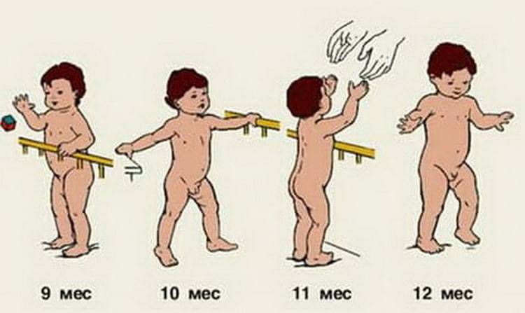 Первые шажочки: когда ребенок начинает ходить и как ему в этом помочь?