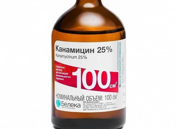 Оксолиновая мазь при стоматите – лечение инфекционно-воспалительных заболеваний у детей и взрослых оксолиновой мазью