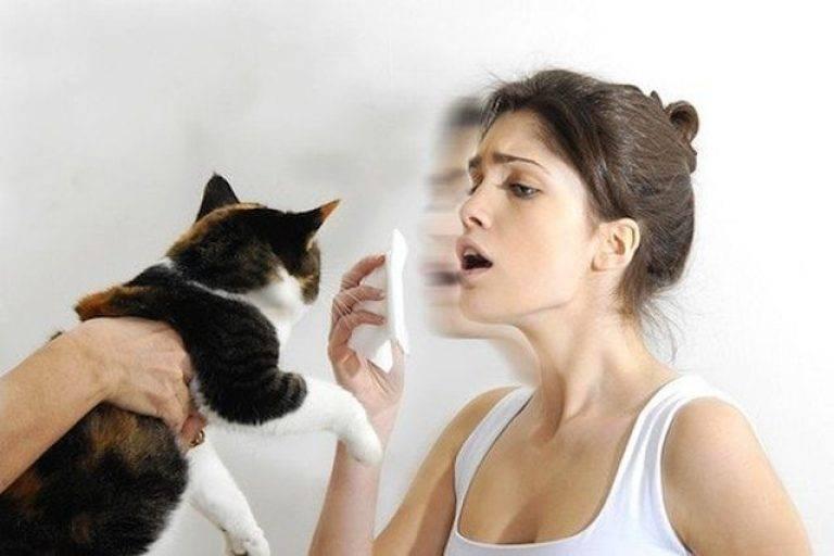 Аллергия на животных: симптомы, лечение