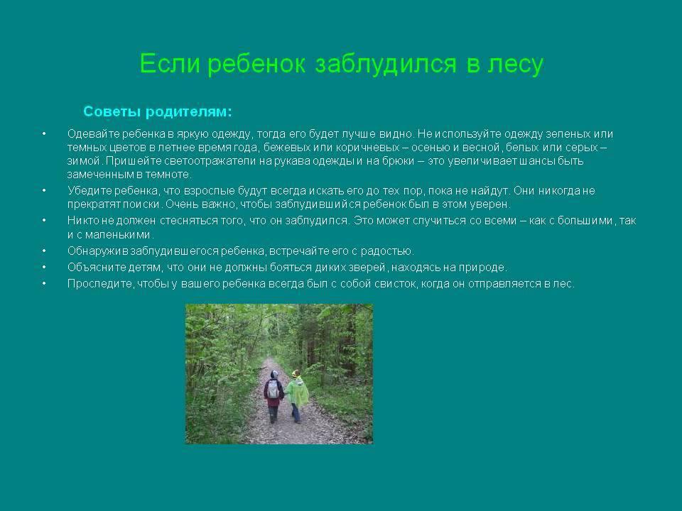 Безопасность детей летом: что делать, чтобы ребенок не потерялся на даче или в лесу? безопасный детский отдых - памятка для родителей