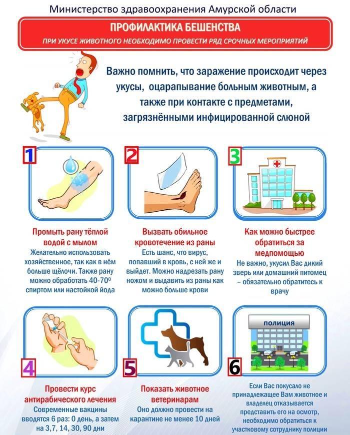 Памятка «профилактика гриппа и орви» - информация - официальный сайт роспотребнадзора