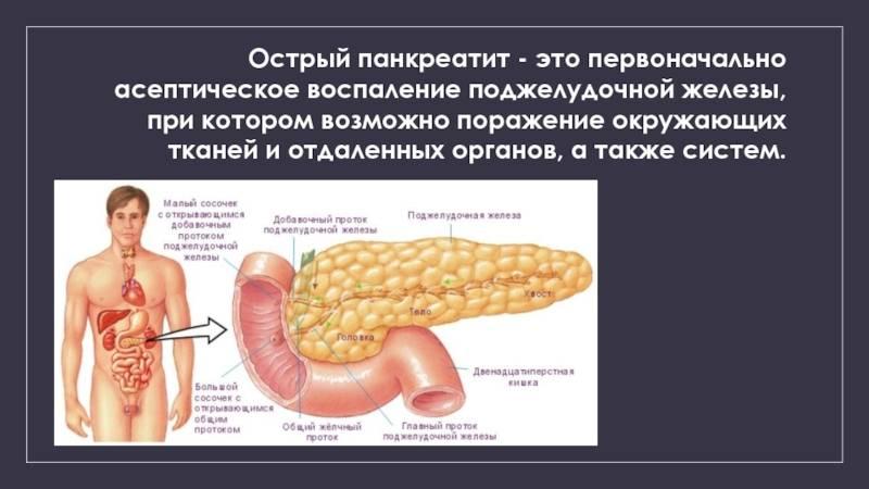Реактивный панкреатит: причины, симптомы, диагностика и лечение у взрослых