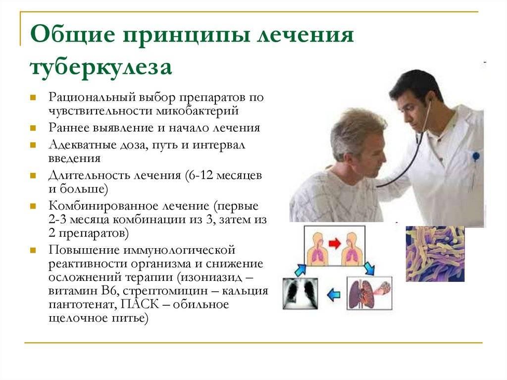 Туберкулез. симптомы, лечение и профилактика туберкулеза у детей