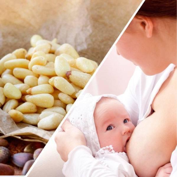 Заменяем сладости на полезные рецепты из сухофруктов при грудном вскармливании: 5 правил употребления и введения в рацион