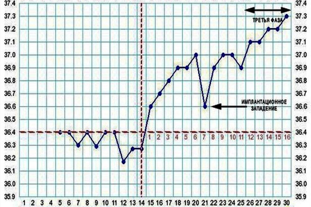 Пониженная температура при беременности на ранних сроках, во 2 и 3 триместрах