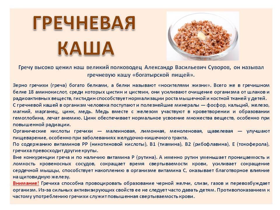 Как готовить гречневую кашу для первого прикорма?