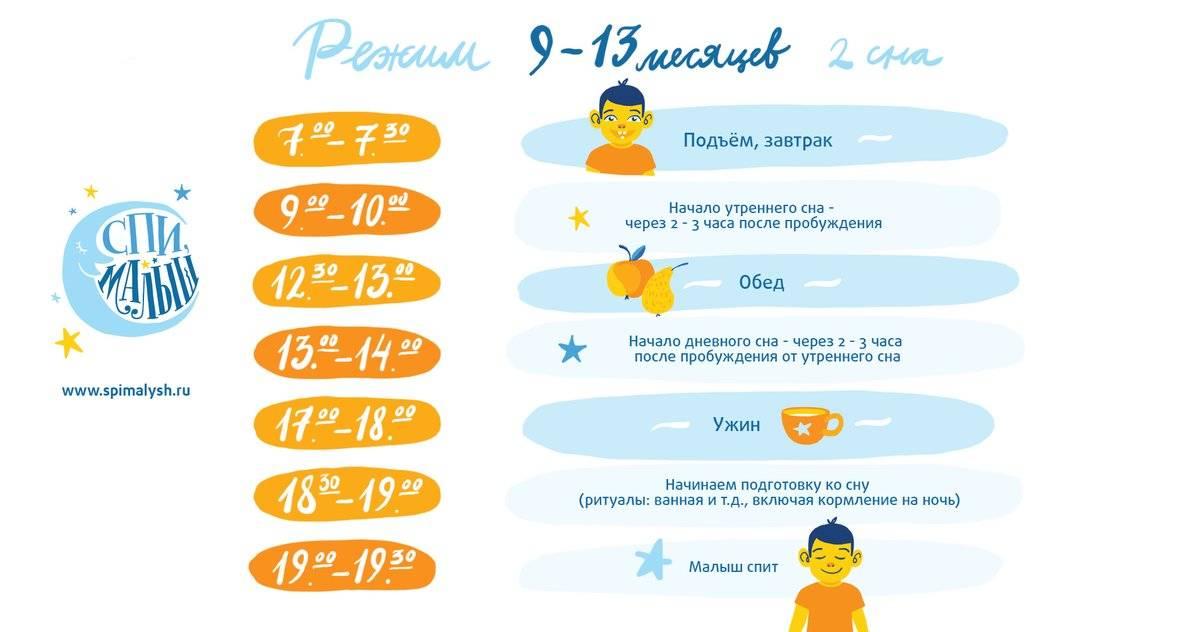 Режим дня ребенка в 11 месяцев: распорядок по часам и возможные проблемы