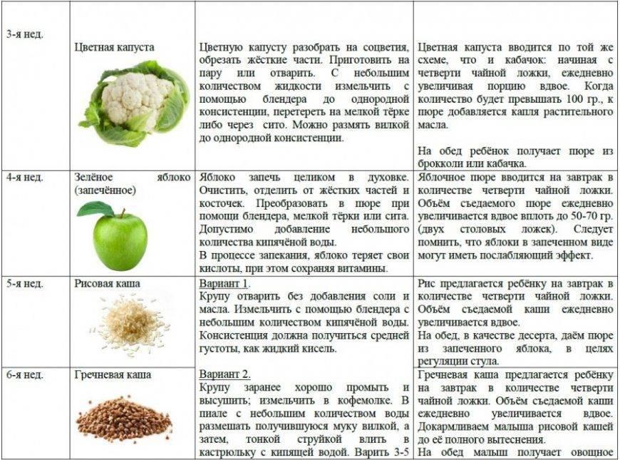 Со скольки месяцев можно давать ребёнку картофельное пюре? | полезная информация для всех