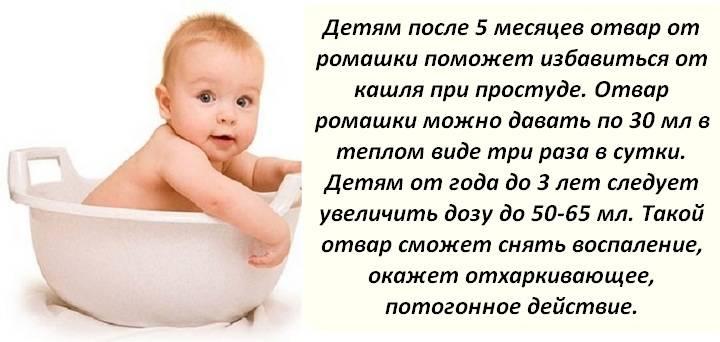 Ромашка при цистите у женщин, мужчин и ребенка: как заваривать и принимать | компетентно о здоровье на ilive