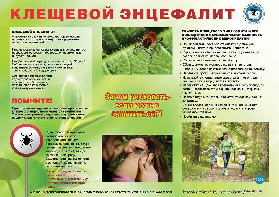 Укус оводом человека: симптомы и признаки | компетентно о здоровье на ilive