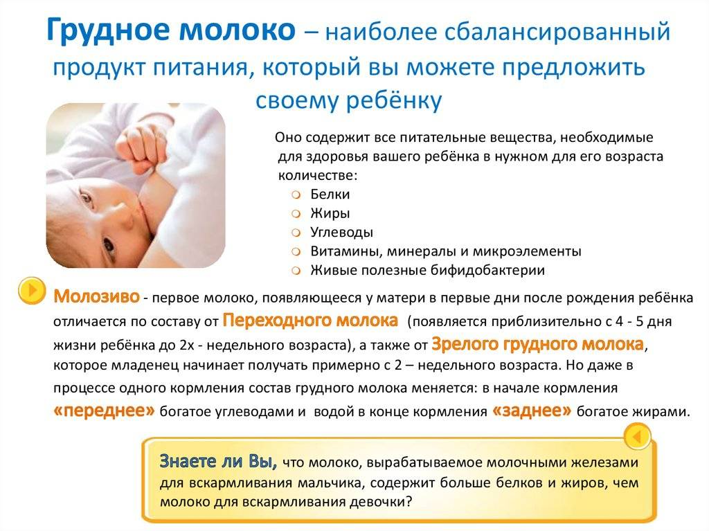 Сколько нужно кормить ребенка грудью - за и против длительного вскармливания