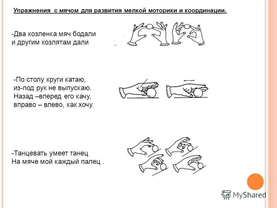 Упражнения на мелкую моторику рук у взрослых: лучший комплекс, польза
