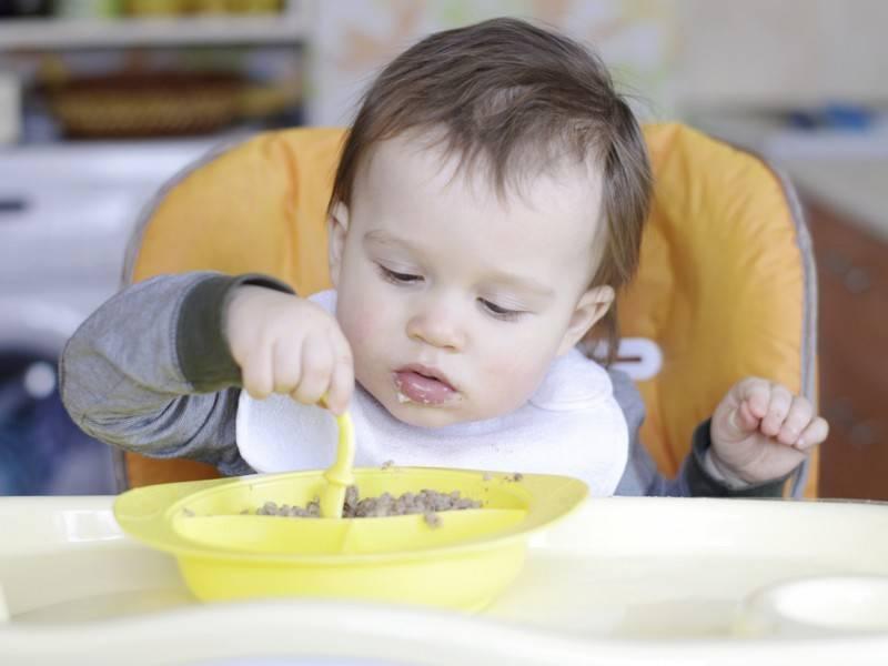 Прикорм с 7-8 месяцев – какие продукты пора вводить в прикорм, примерное меню