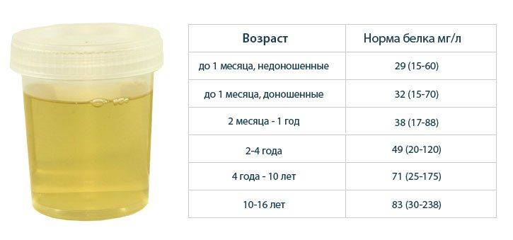 Протеинурия. причины, симптомы и лечение протеинурии.!