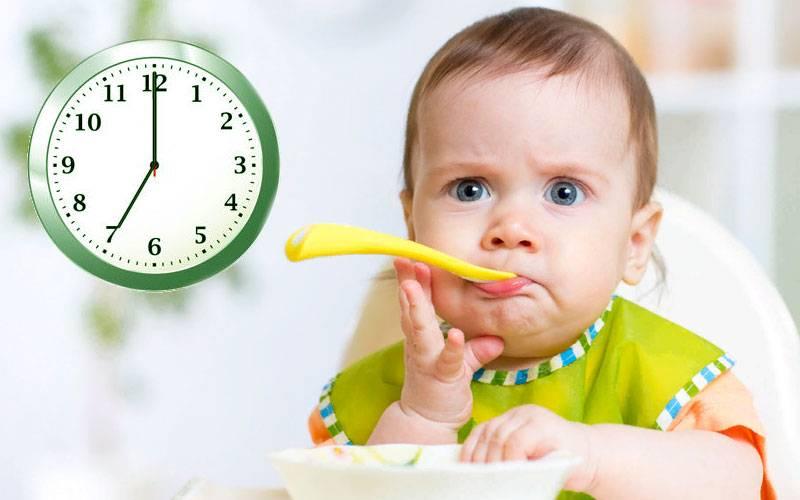 Покупаем детское питание: на что обращать внимание? питание детей до года