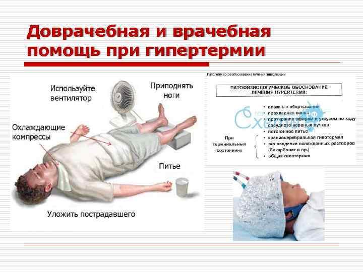 Астраханская риккетсиозная лихорадка: причины, симптомы, диагностика, лечение