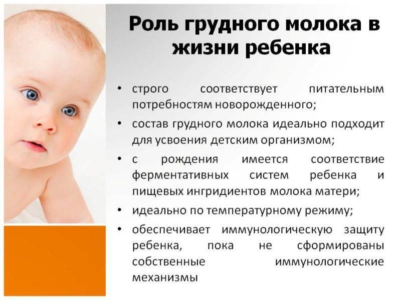 8 способов увеличения количества материнского молока