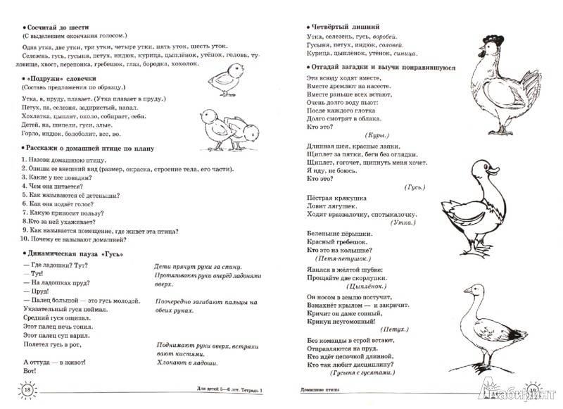 Логопедическое занятие с детьми 3–4 лет с зрр «дикие животные»