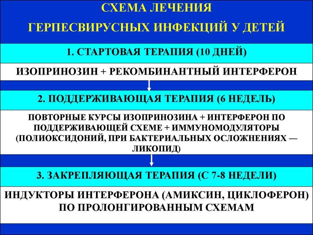 Иммунологические изменения при цитомегаловирусной инфекции - сибирский медицинский портал