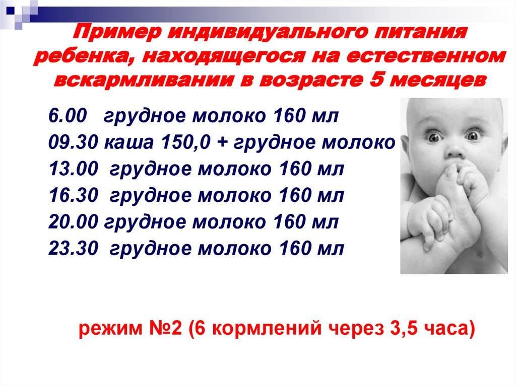 Как организовать примерный режим дня новорожденного ребенка в 1 месяц?