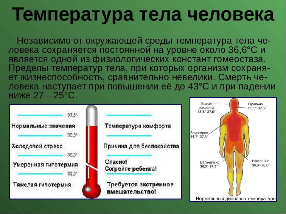 Лихорадка, или повышение температуры тела