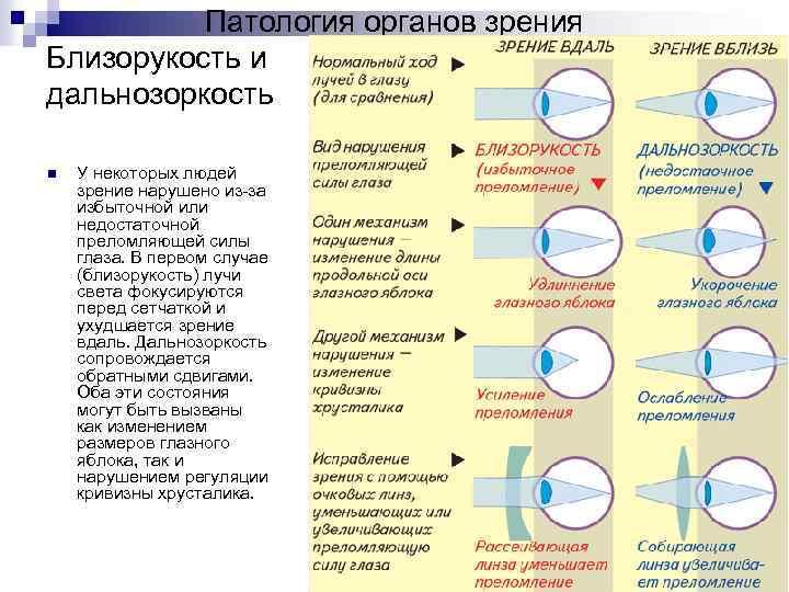 Сахалинский центр микрохирургии глаза