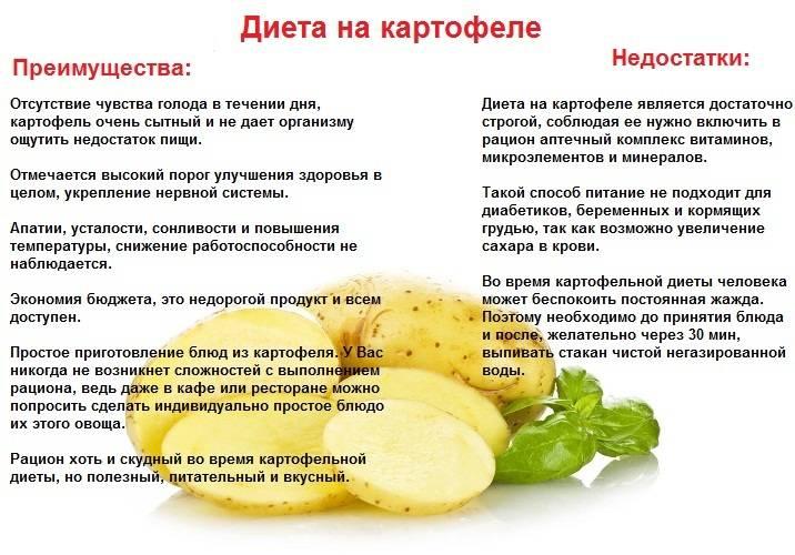 Можно ли картофель кормящей маме при грудном вскармливании