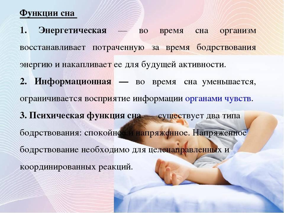Нормы сна: от года до двух