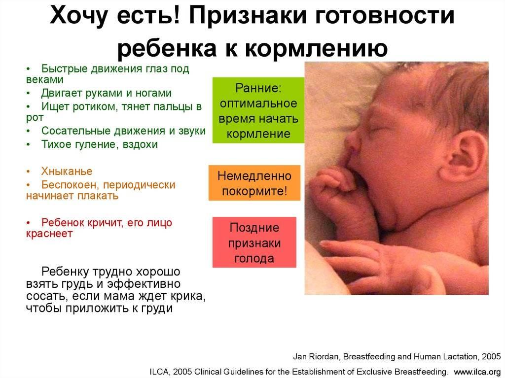 Как определить что ребенок голоден. как понять, что грудничок хочет кушать