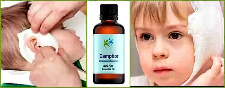 Камфора. что мы знаем о ней?