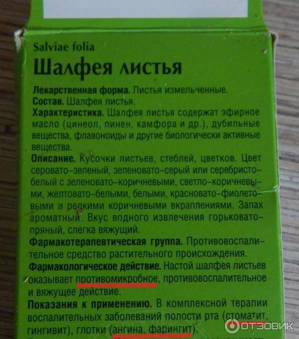 Эффективно ли применение шалфея для прекращения лактации, как его принимать при грудном вскармливании и что говорят отзывы?