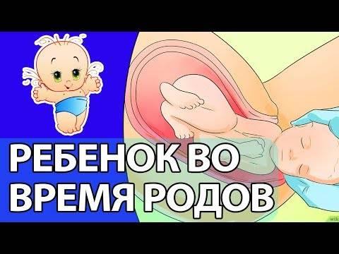 Почему перед родами ребенок затихает, за какое время перед родами ребенок затихает, всегда ли ребенок затихает перед родами