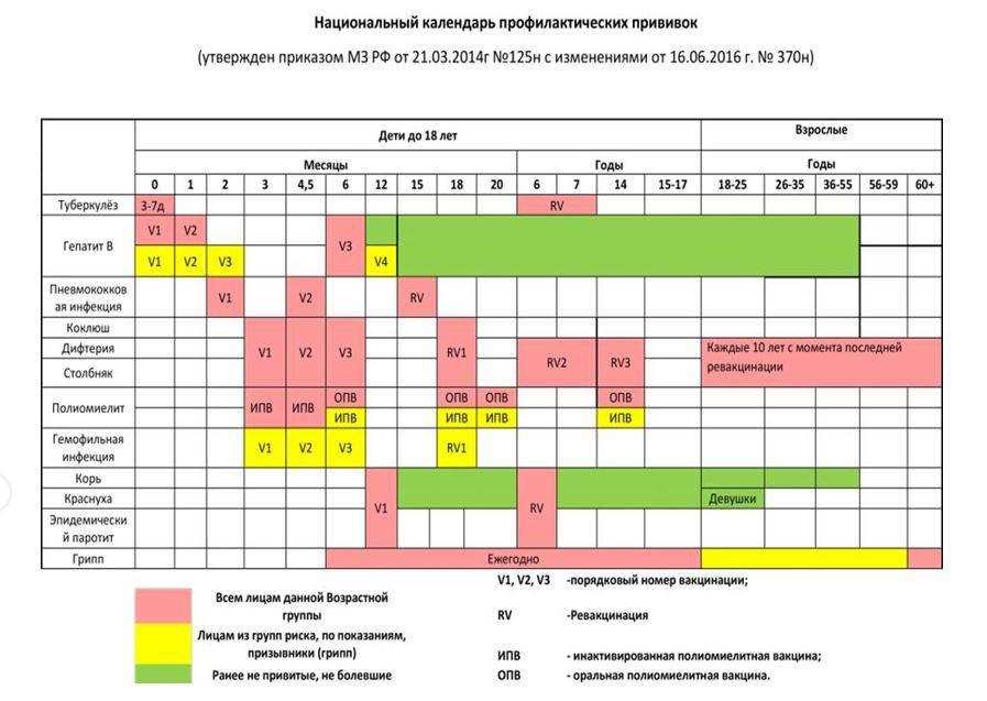 Календарь прививок для детей до 1 года в россии: сроки и особенности вакцинации