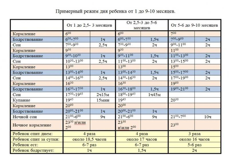 Режим дня ребенка в 9 месяцев + таблица по часам  