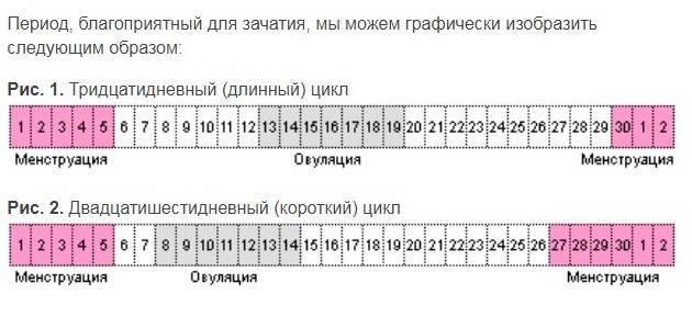 Калькулятор овуляции - рассчитать овуляцию с календарь овуляции