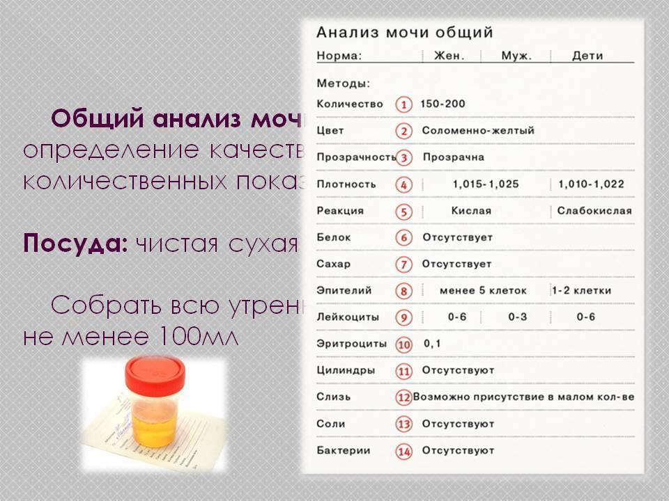 Мочекаменная болезнь (уролитиаз) — симптомы, лечение, профилактика | «восьмая клиника»