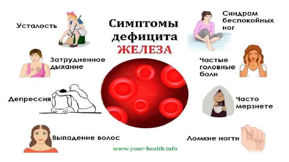 Железодефицитная анемия: симптомы и лечение – напоправку – напоправку
