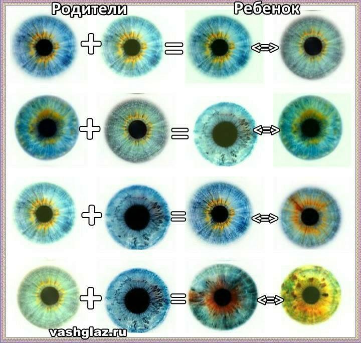 Цвет глаз у ребенка от родителей: таблица