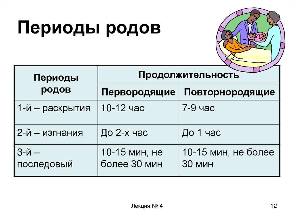 Безводный период в родах: норма, сколько может длиться, влияние длительного времени без вод на плод